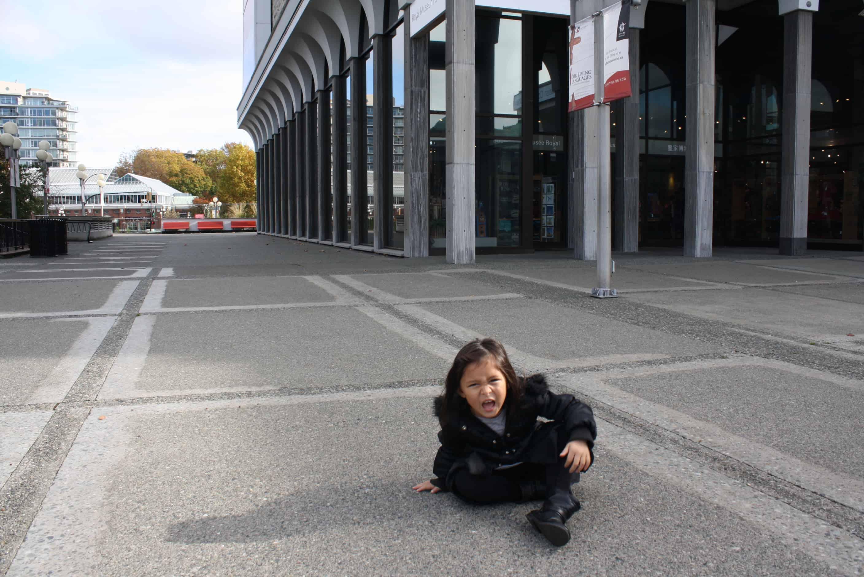 Un copil cu voință puternică - nevoi și împlinirea lor